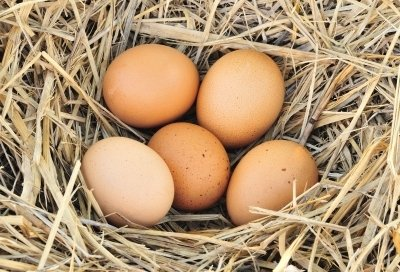 Eizellenqualität verbessern. EIzellenreserve sinkt ab mit Alter.
