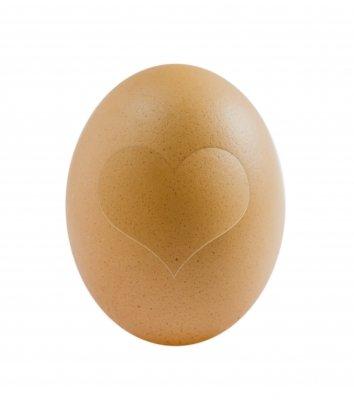 Eizellqualität verbessern