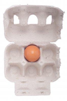 Eizellenqualität mit Vitaminen verbessern.