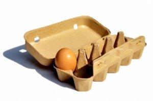 Wenige Eizellen, schlechte Eizellenqualität, Eizellenqualität verbessern
