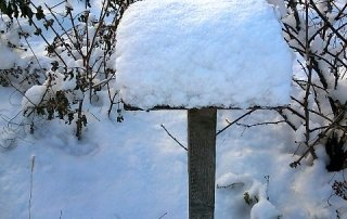 vitamin d in winter